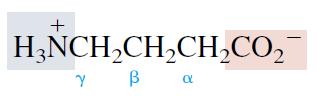 4-Aminobutanoic acid