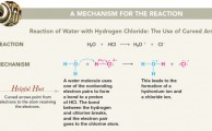 reaction of HCl and water